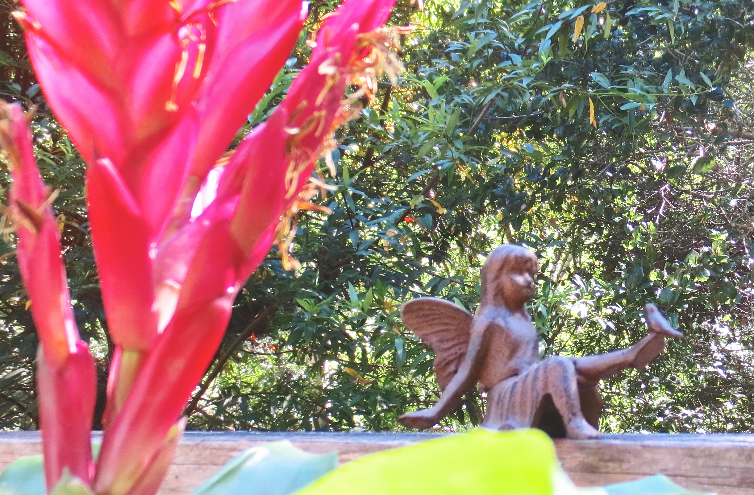 Angel in the garden